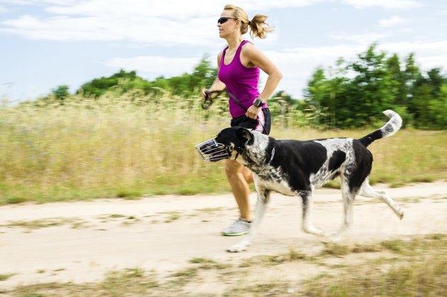 Woman runner running, walking dog in summer nature