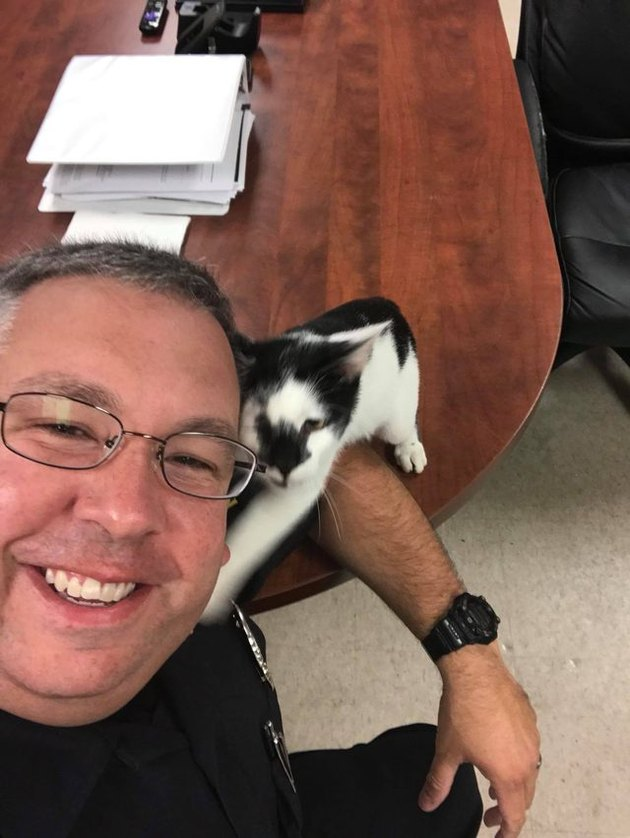 Cat steals hearts of police officers in South Carolina