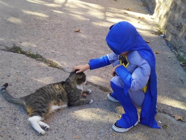 This Little Boy Dresses as a Superhero to Help Homeless Cats