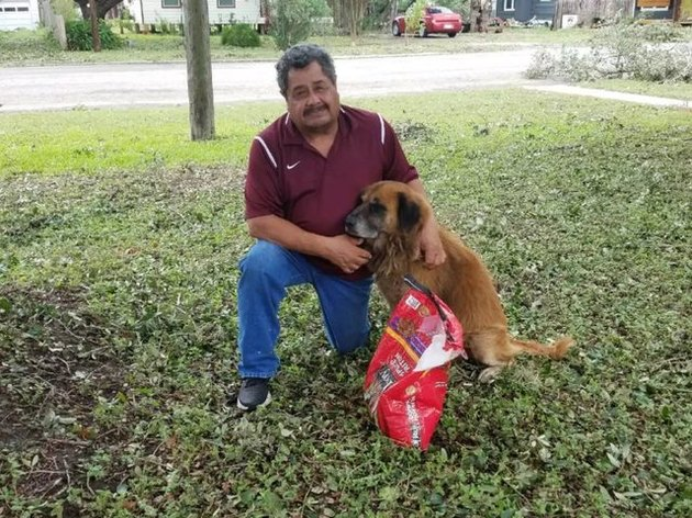 Otis the dog carries bag of food through hurricane floodwaters