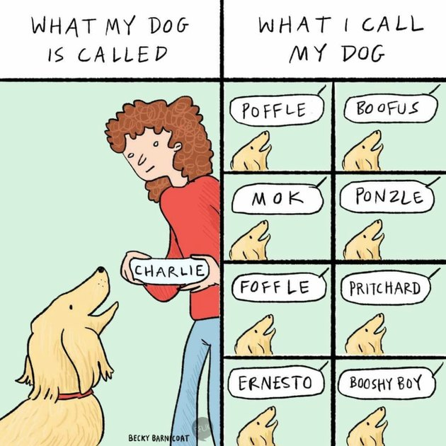 What my dog is called vs what I call my dog