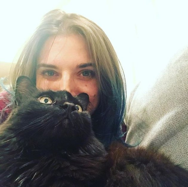 Woman's mom knits cat capes for the funniest reason