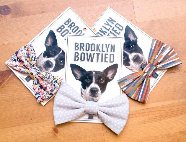 dog bowties