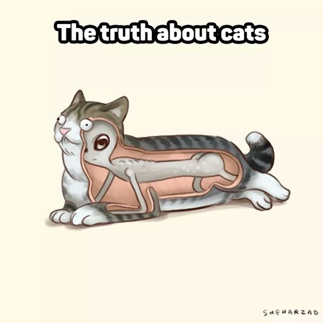 """Cartoon of an alien inside of a cat with caption """"The truth about cats""""."""