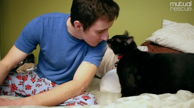 Rescue cat rescues army vet from depression