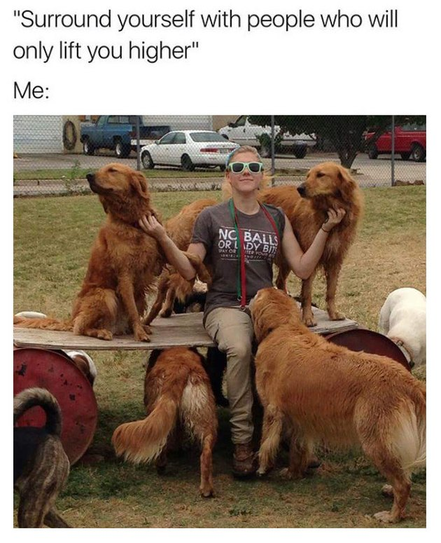 Photo of woman surrounded by golden retrievers.