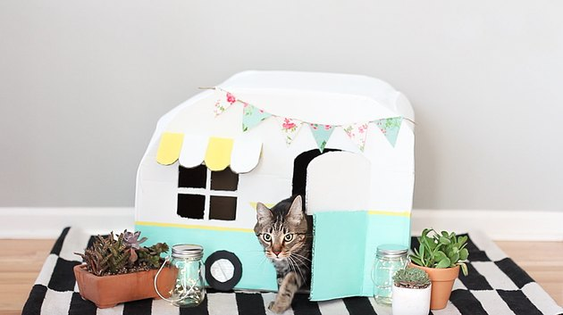 kitty inside vintage kitty camper