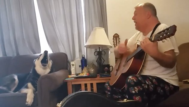 This Singing Dog Won His Family a Vacation