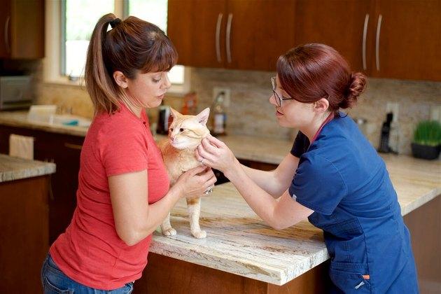 Dr. Castro with a patient.