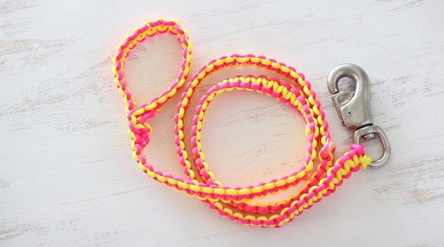 Macrame dog leash.