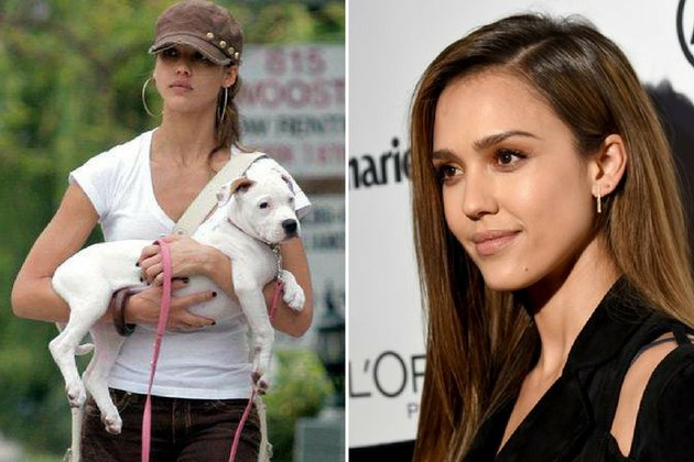 Devastation As Jessica Alba Loses Her Second Dog In Two Weeks