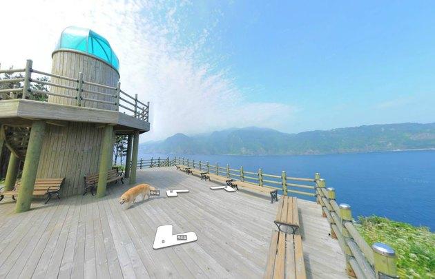 Photobombing doggo brings a flash of color to snaps of Korean island