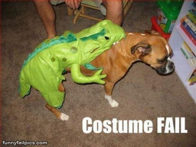 Dog wearing dinosaur on its backside.