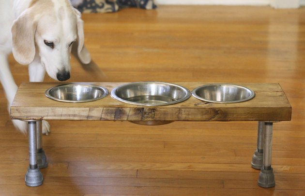 DIY industrial dog feeder