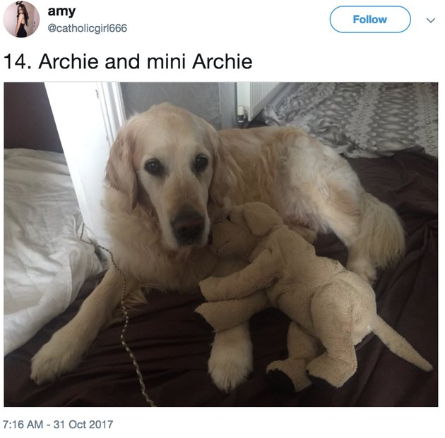 archie and mini archie
