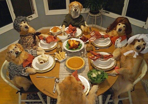 bailey thanksgiving