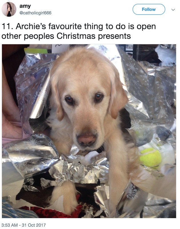 archie in presents