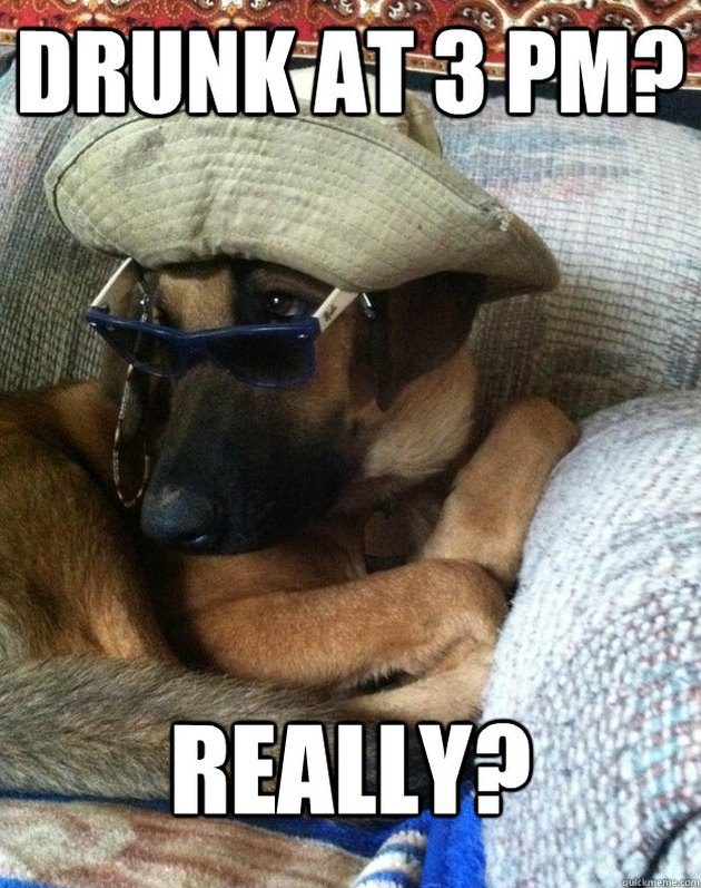 Skeptical dog in sunglasses and fishing hat.