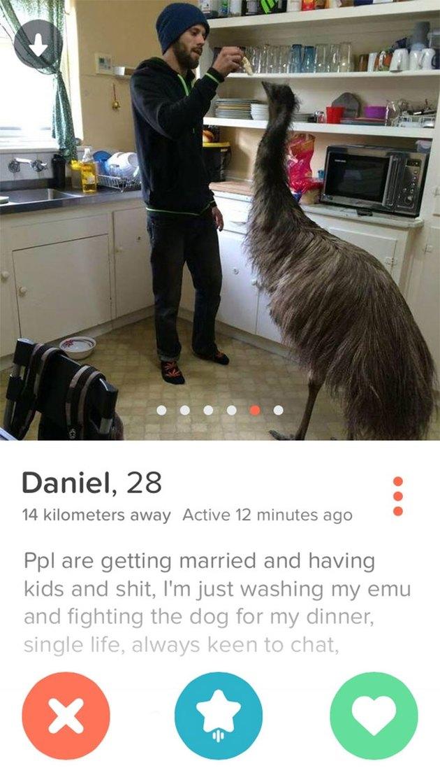 Tinder picture shows man feeding emu in kitchen