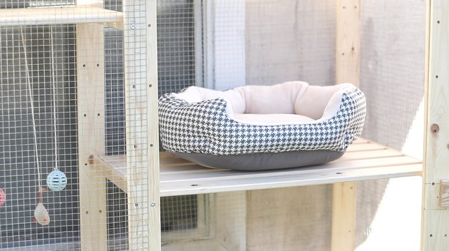 Pet bed inside catio