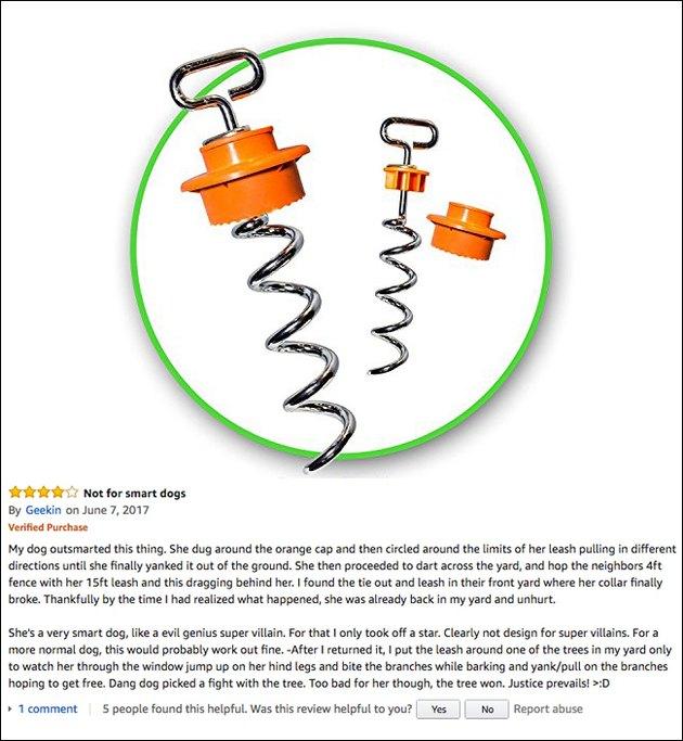 Funny Amazon review (IntelliLeash)