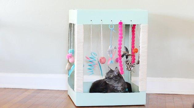 cat inside kitty playplace