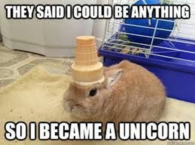 Just 20 Of The Most Ridiculous Unicorn Memes We've Ever Seen