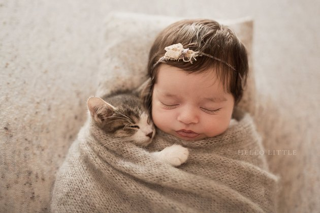This Baby and Kitten Cuddling Are So Cute It'll Kind of Hurt Your Eyes