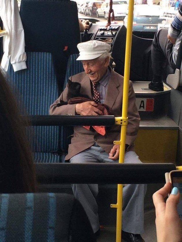 Dapper man riding bus in Istanbul with black kitten makes internet smile