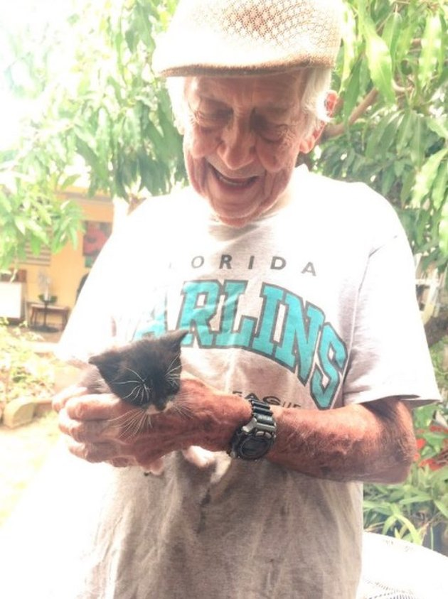 Grandpa cares for stray cats against grandma's wishes