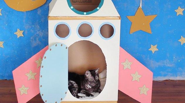 Cat laying inside cardboard rocket ship