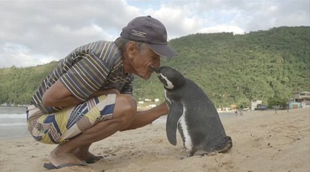 19 Of The Most Heartwarming Animal Moments Ever