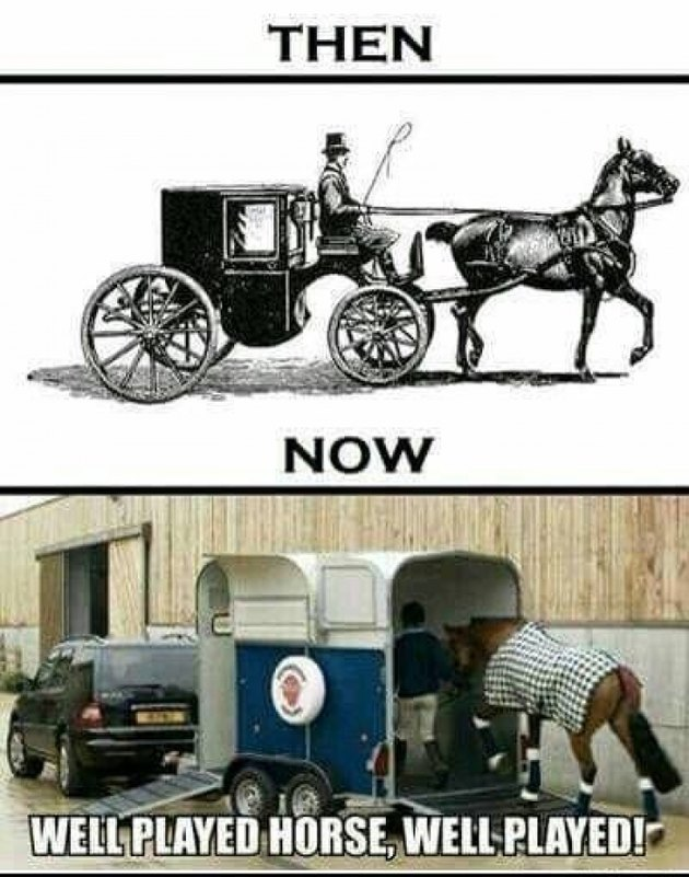 Horse-drawn carriage and horse entering trailer.