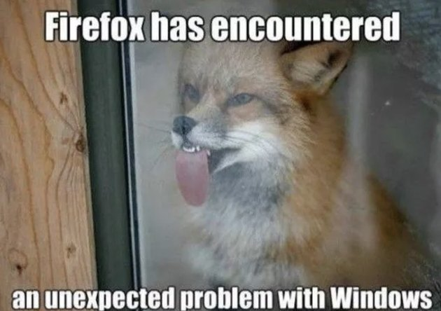 Just 56 Hilarious Animal Puns That Exist on the Internet