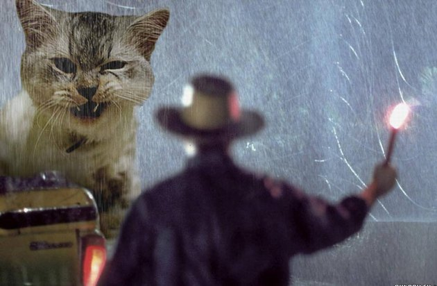 Dinosaurs in Jurassic Park replaced with cats