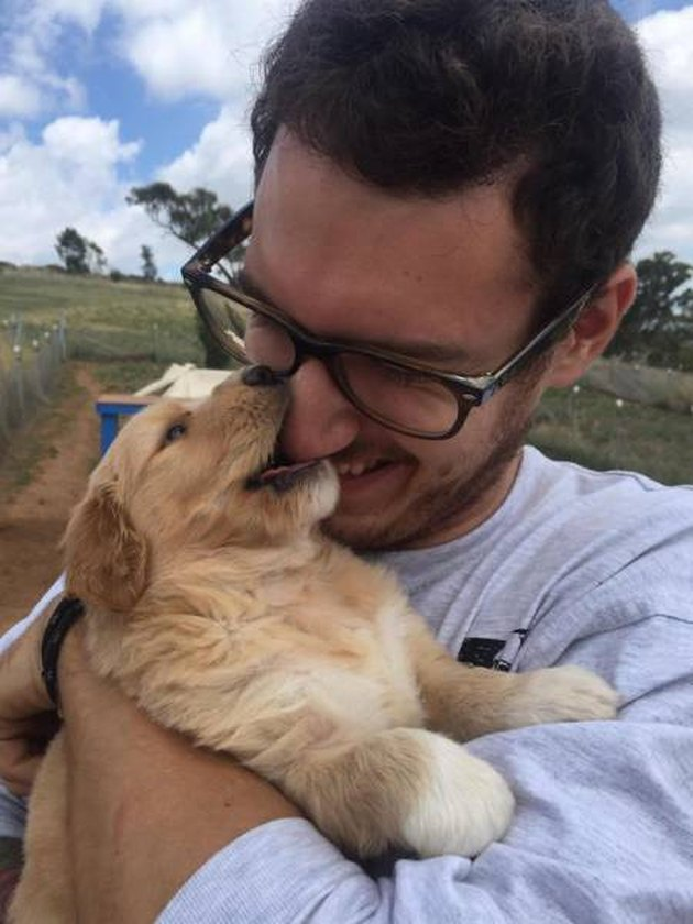 Only click on this gallery of dogs meeting their humans if you want to happy cry