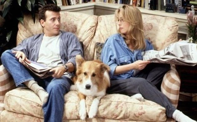 Which sitcom pet are you based on your zodiac