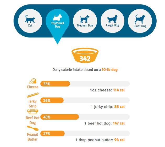 Graph showing pet calorie requirements.