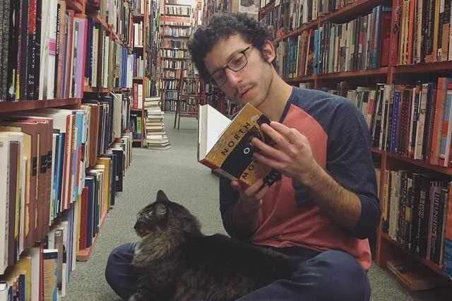 cat sitting on man in library