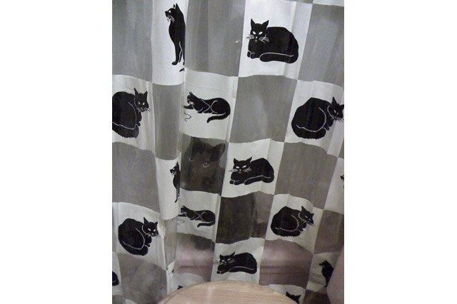 Black cat sitting behind shower curtain patterned with black cats.