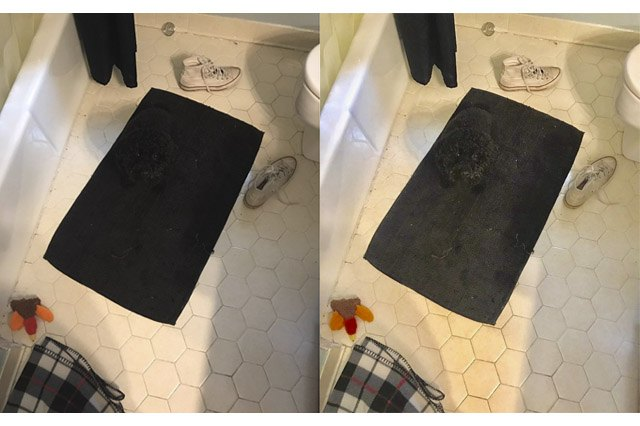 Black dog sitting on black bathmat.
