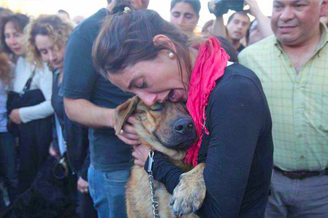 A woman is tearfully hugging a dog.