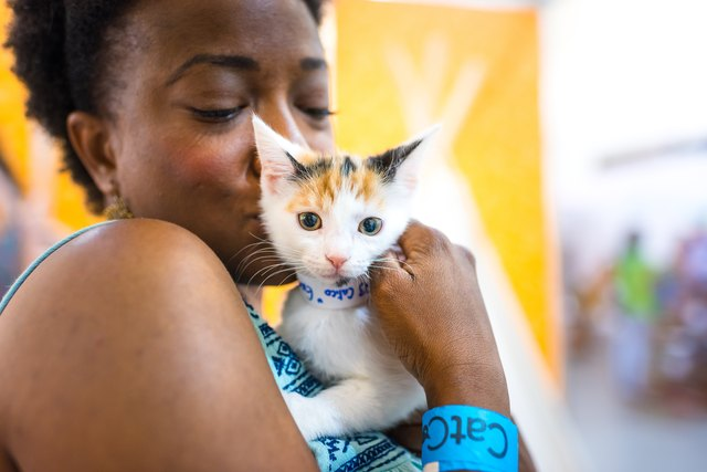 A woman kisses a cat at CatCon 2018.