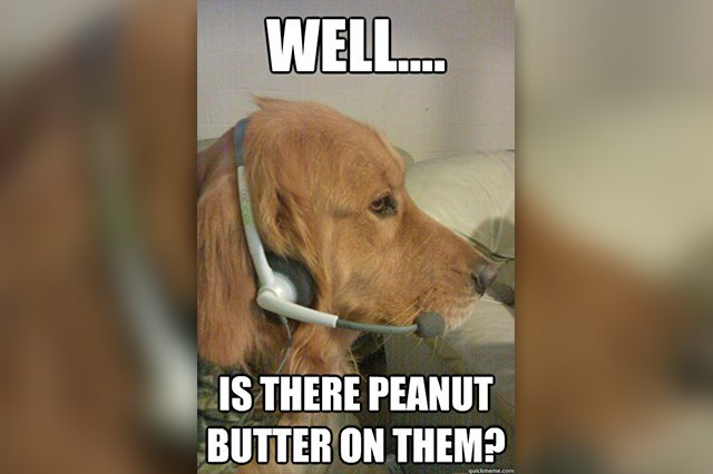 dog answering questions about peanut butter