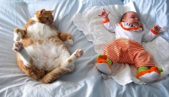 Cat and baby laying on their backs.