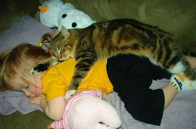 baby and cat sleeping in a pile of stuffed animals