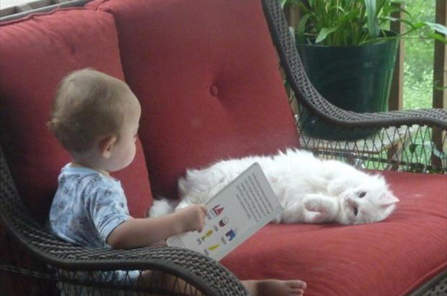 baby reading to white cat