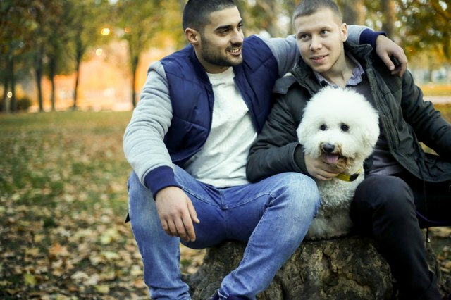 Two man sitting in autumn park with dog