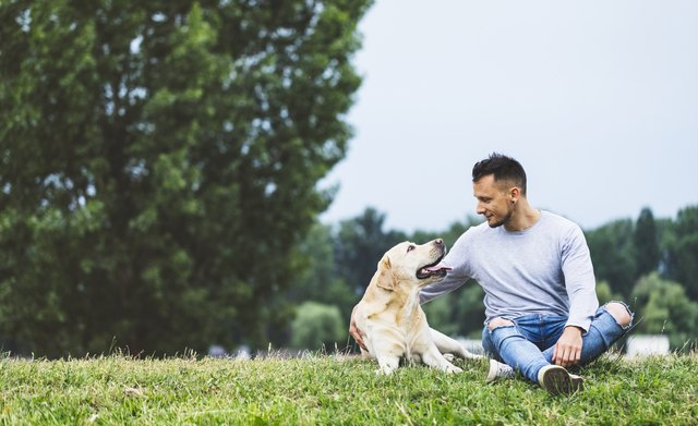 Young man hugging his dog in nature