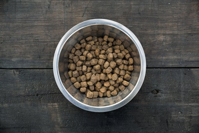 The Best Dog Foods For Dogs With Pancreatitis Cuteness